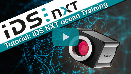 IDS NXT rio  and rome with deep ocean core